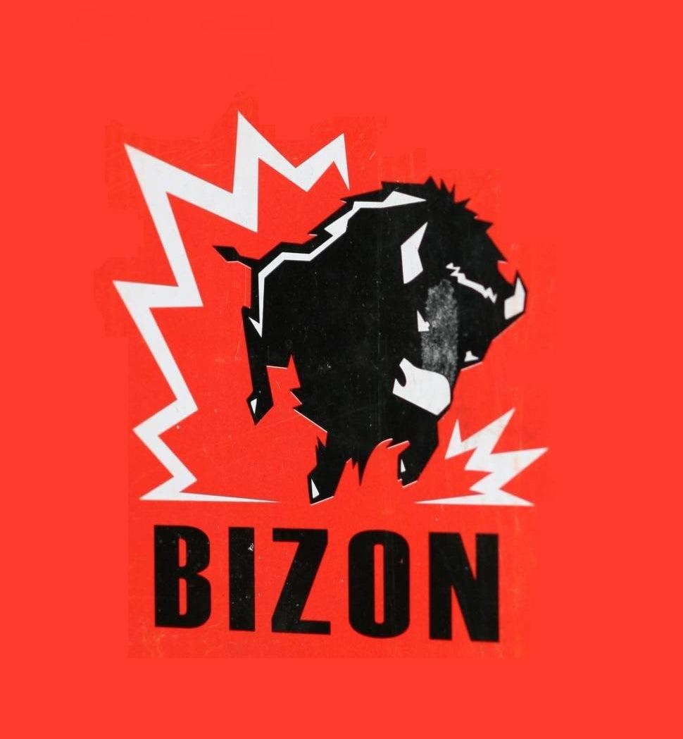 Сварочный флюс BIZON UF-10.71